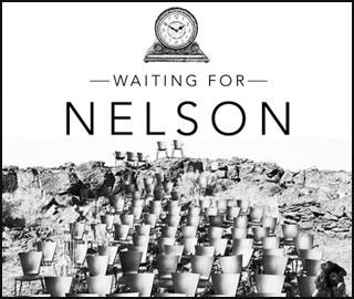 Nelson-icon
